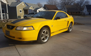 Looking for V6 Mustang Dual Exhaust 1999-2004