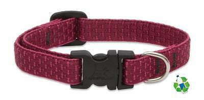 Dog Collar Berry (NEW Berry Red Dog Collar or Leash in 1/2