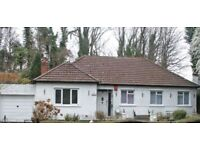 3 Bedroom Bungalow, Dublin road Omagh.
