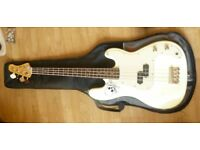 Gould bass guitar + case