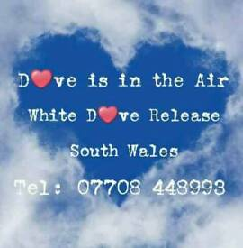 Dove Release for Weddings & Funerals
