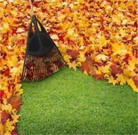 Fall cleanup and lawn cutting services 6477125231