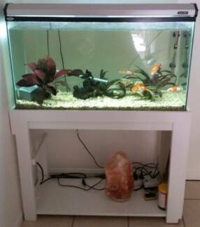 FISH TANK - 3 foot with White Stand