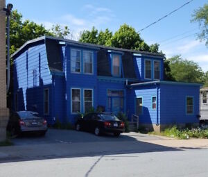 1 bedroom plus den available Sept 1 Downtown Dartmouth