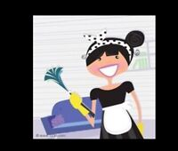 Cleaning lady $20 hourly mon-fri