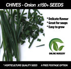 Onion Dry Vegetable Plant Seeds