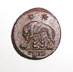 D-Rex Coins