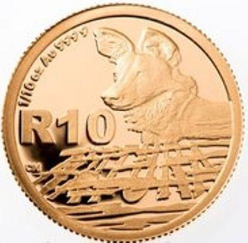 Gold Dog Coin Ebay