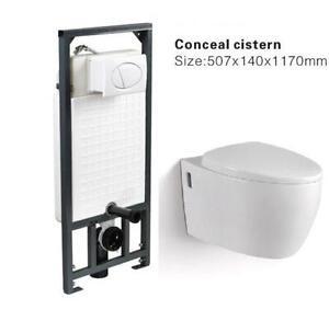 Wall Hung Toilet Ebay