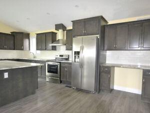 Graphite 10' x 10' wood kitchen - Fin. Avail. - $55/mth