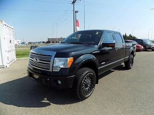 2011 Ford F-150 Platinum 4x4 SuperCrew Cab 5.5 ft. box 145 in. W