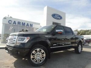 2013 Ford F-150 Platinum, 4x4, H/C Leather, LOW KMS!!! Loaded