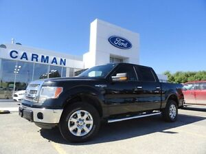2013 Ford F-150 XLT 4x4 SuperCrew - EMPLOYEE PRICING ON NOW -