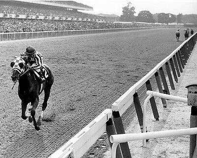 Horse Racing Photo (SECRETARIAT 8X10 PHOTO HORSE RACING 31 LENGTHS PICTURE JOCKEY)
