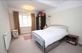 Huge room in lovely 2 bed flat