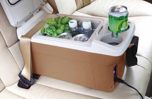 Compact Fridge For Dorm: 9L DC 12V Car Boat Travel Freezer Refrigerator Cooler