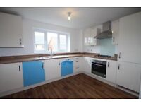BRAND NEW LARGE 3 BED HOUSE, FREEMANS MEADOW, £1350 pcm