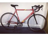 Brand New Carbon Fibre Carrera Road Bike - trek Boardman specialized