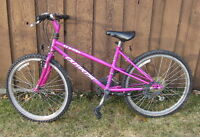 GIRLS 21 SPEED MTN BIKE