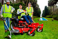 Affordable Grass Cutting and Lawn Care Services
