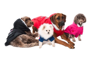 20% off ALL winter gear at The Pet Shoppe