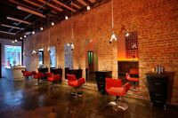 Looking for talented hair stylists for brand new Glebe salon