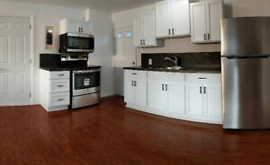 1 Br Apartment, New Kitchen and Appliances in Fairview