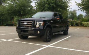 2009 Ford F-150 4WD SuperCrew 157 FX4 $19,899