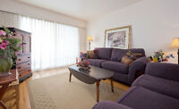 Very Bright One Bedroom Furnished Suite downtown near the Marina