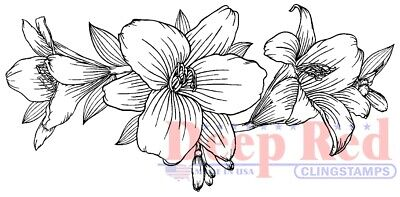Deep Red Border (Deep Red Stamps Lily Border Rubber Cling)