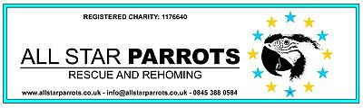 All Star Parrots Rescue and Rehoming