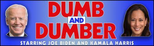 Anti Joe Biden Bumper Sticker, Anti Kamala Harris Sticker, Dumb And Dumber