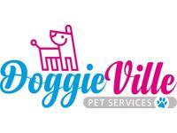 DoggieVille Pet Services