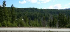Shuswap Lake Building Lot in Blind Bay Edmonton Edmonton Area image 8