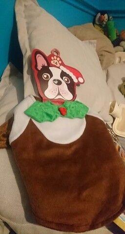 Dogs christmas pudding fancy dress for medium dog brand new 27cm