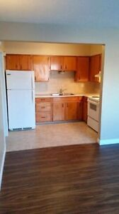 Large 1-bedroom apartment - Avail Aug - 154th Street