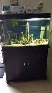 Resun DM 800 120 litre fish tank and stand Nowra Nowra-Bomaderry Preview
