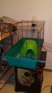 cage medium