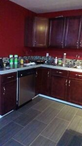 Two bedrooms basement suits for rent