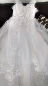 Rogers network phone Needed......will trade new wedding gown