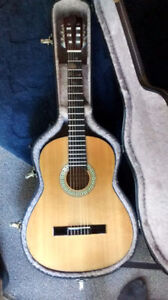 Denver Classical Guitar and Hard shell Case
