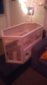 XL Hamster cage + accessories