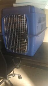 **Extra Large Dog Crate**