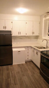 Renovated 2 Bedroom Apt in Whitby.  Close to Go train, Brock