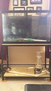 60 Gallon drilled saltwater tank with stand