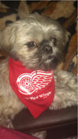 LOOKING FOR DETROIT RED WINGS TICKETS FOR OCTOBER 9th