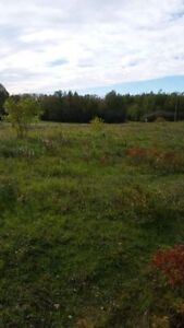 2 Building Lots at 2.45 acres each Strathcona County Edmonton Area image 3