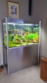 Fluvel 306 fish tank and stand with filter etc
