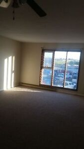 Nice 1 bedroom apartment for rent