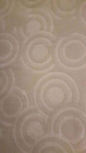 Modern and Classical Area Rugs